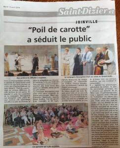 ARTICLE JHM POIL DE CAROTTE JOINVILLE